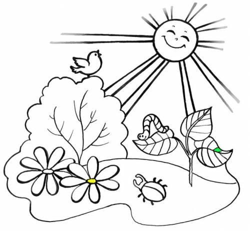 картинки раскраски для детей лето