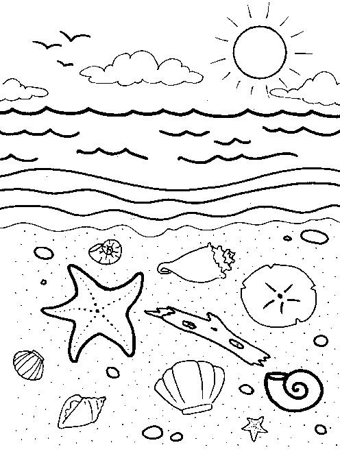 Раскраски море, ракушки