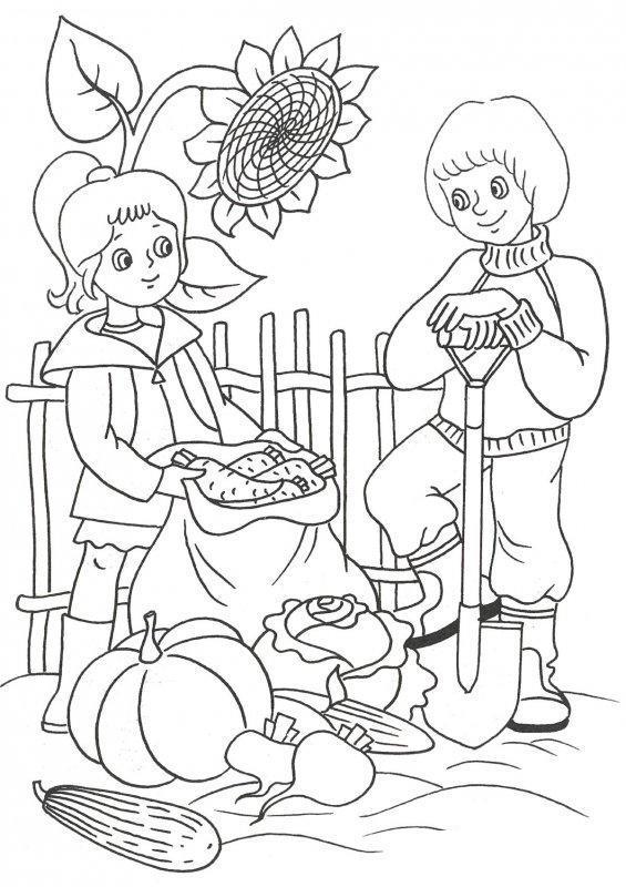 Картинки осенью собирают урожай