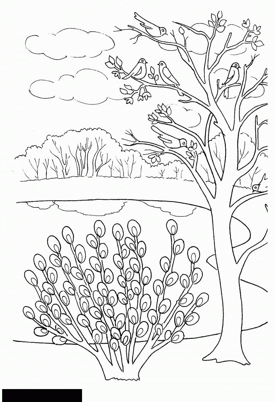 раскраски о весне природа весной весенняя погода птицы на