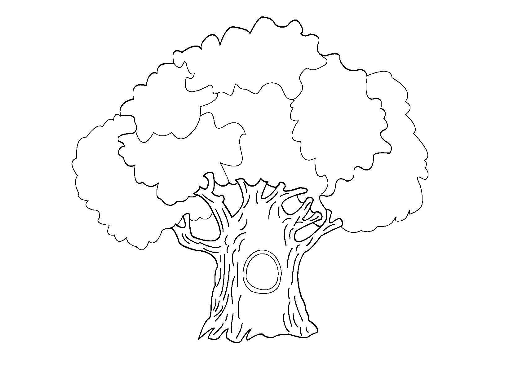Раскраски родословное дерево 33