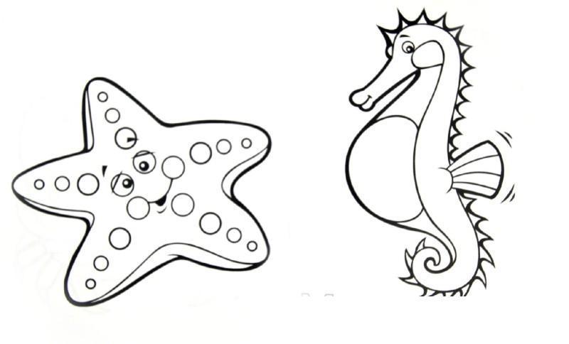 Забавные морские животные - магазин издательства махао