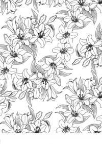 Лилии, раскраски для взрослых, раскраски антистресс скачать, медитативная раскраска, антистресс для занятых людей