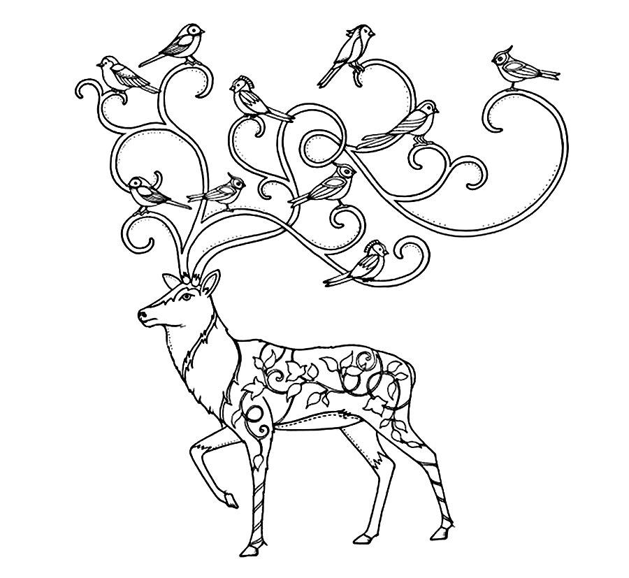 Детские раскраски для девочек и мальчиков, птицы на рогах оленя