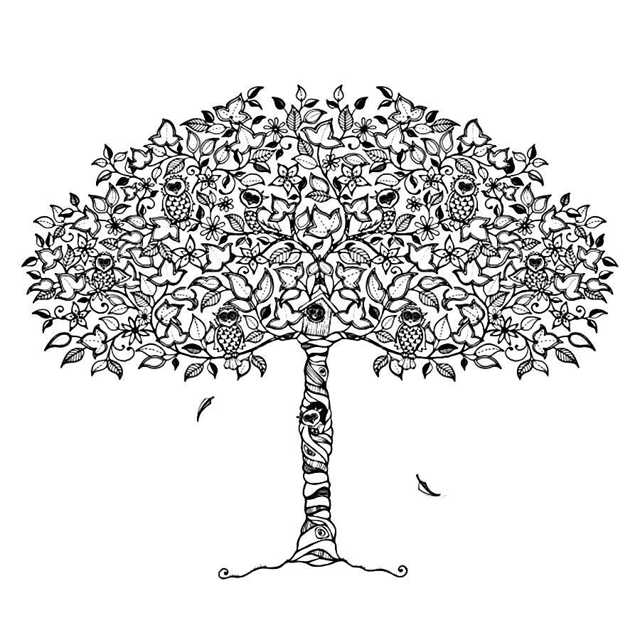 Детские раскраски для девочек и мальчиков, скворечник на дереве