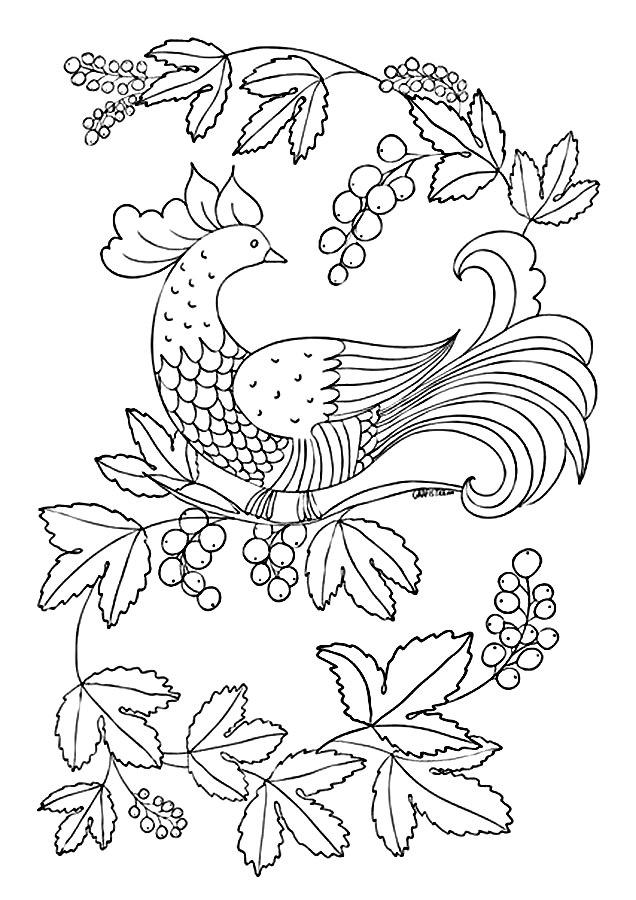 Детские раскраски для девочек и мальчиков, птица на  рябине