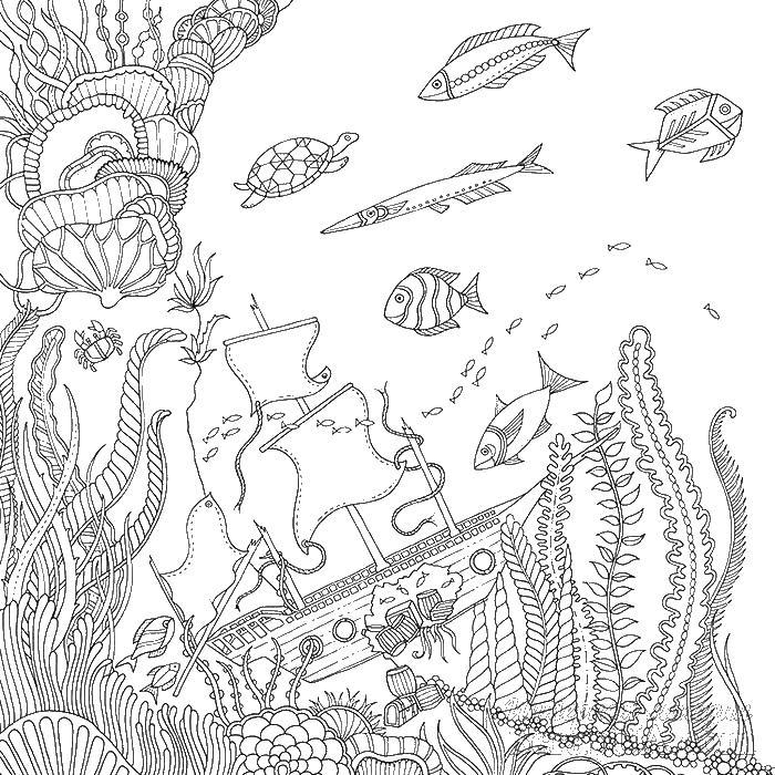 Раскраски море океан