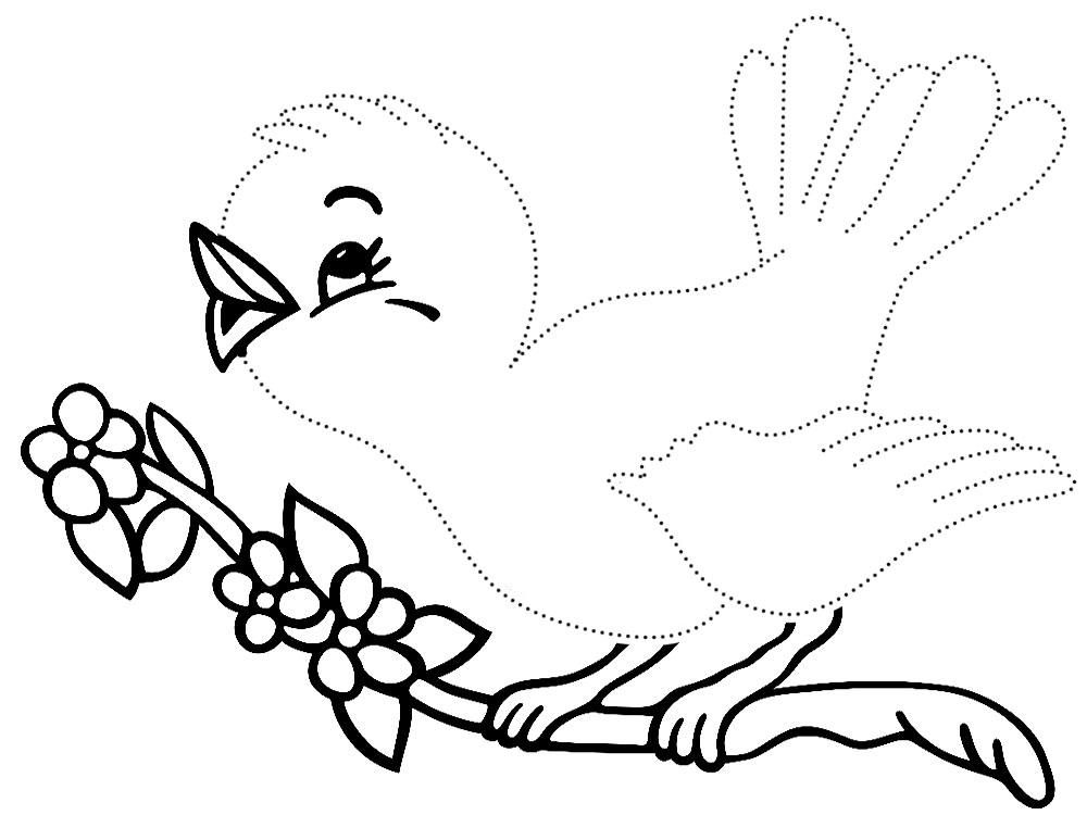 Нарисовать по точкам и раскрасить птицы
