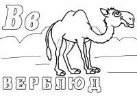 Раскраски животных. верблюд