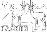 Раскраски животных. газель
