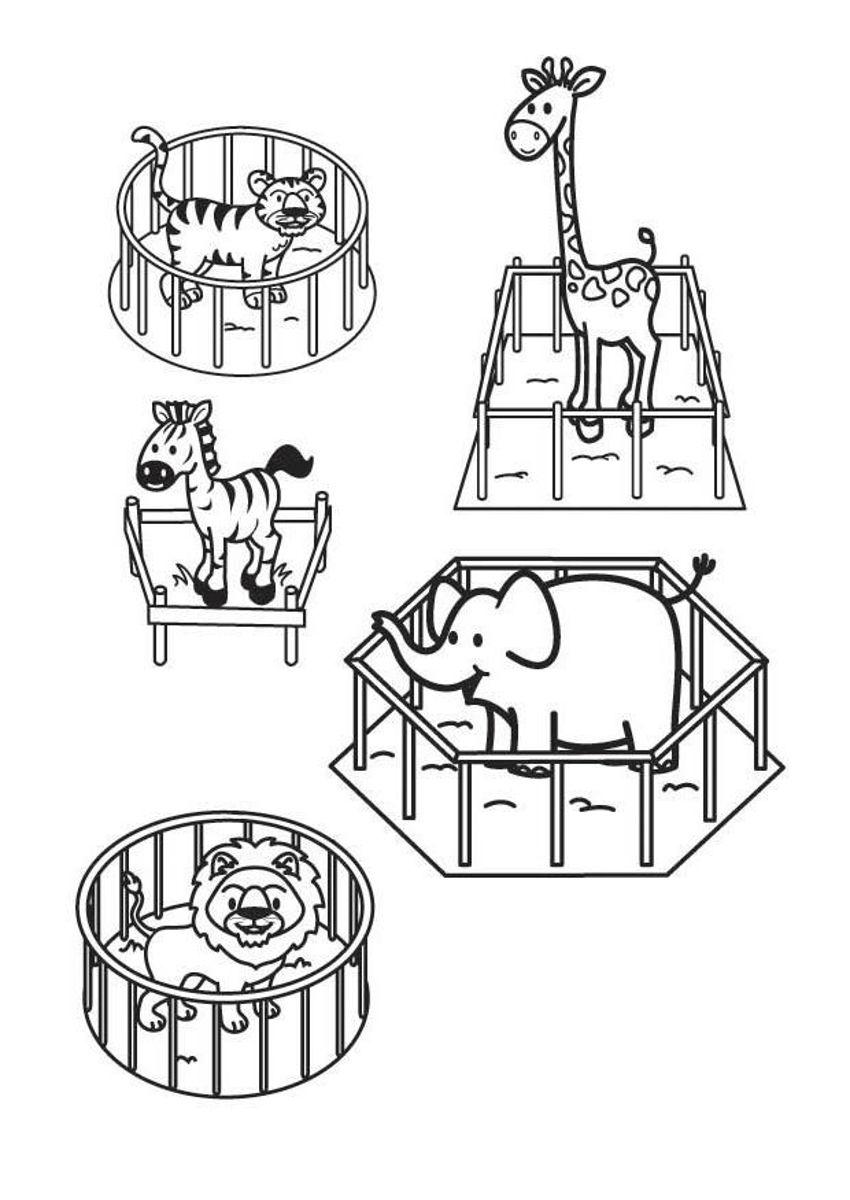 Раскраска животные в зоопарке, тигр, жираф, зебра, слон, лев