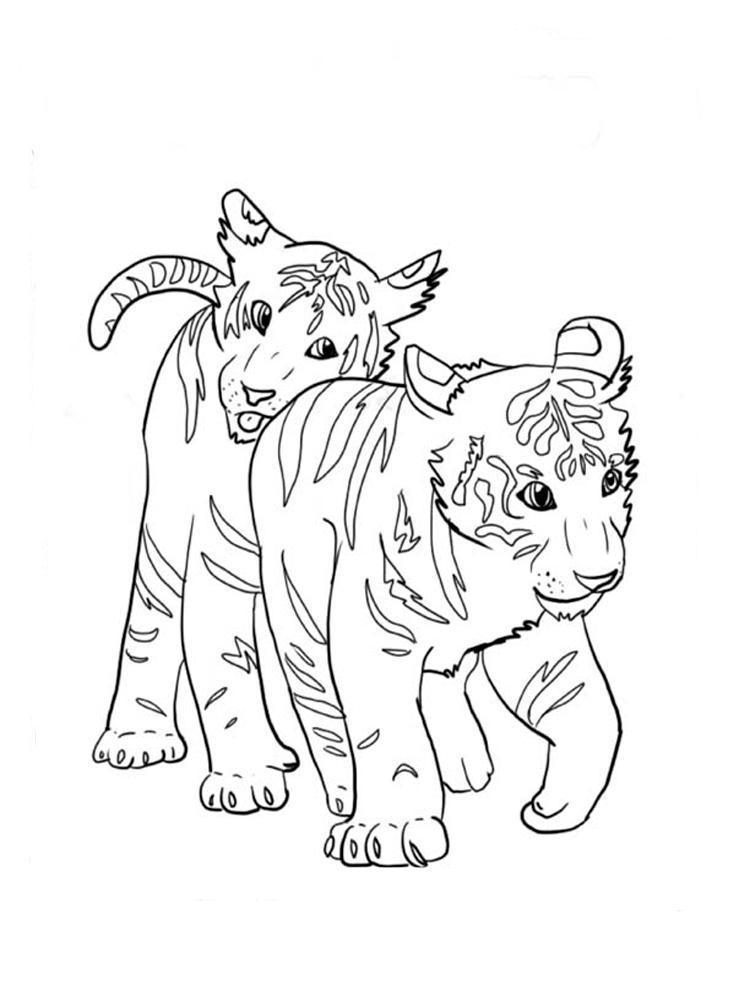 Скачать или распечатать раскраску, тигрята