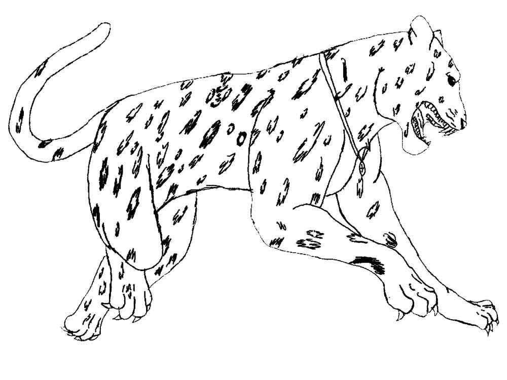 Онлайн бесплатно рисунки животных