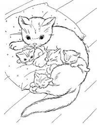 Детские раскраски для девочек и мальчиков, кошка с котятами спит на подушке
