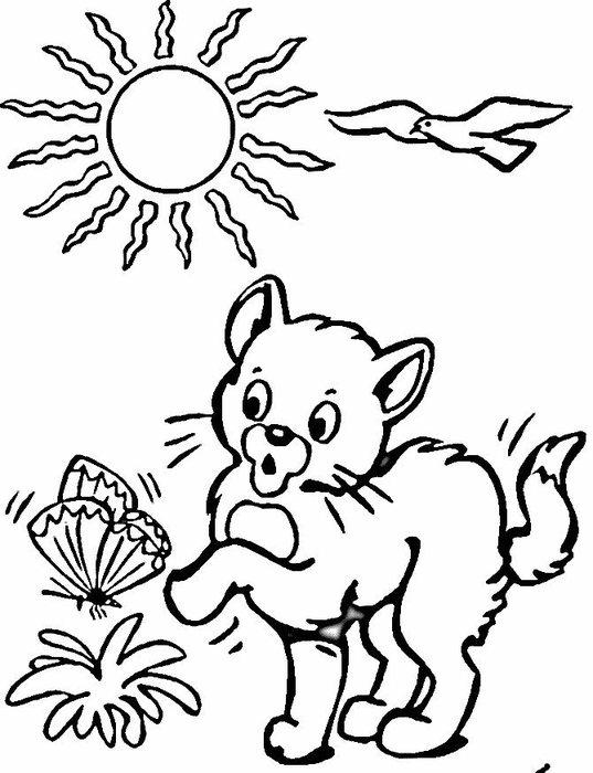 Раскраски кошки  котенок, солнце, бабочка, трава, чайка