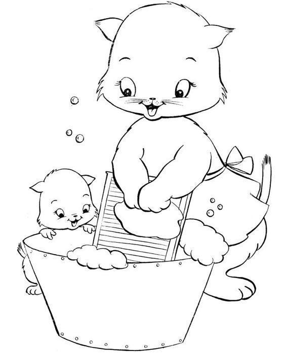 Раскраски кошки  раскраска, любопытный котенок, кошка