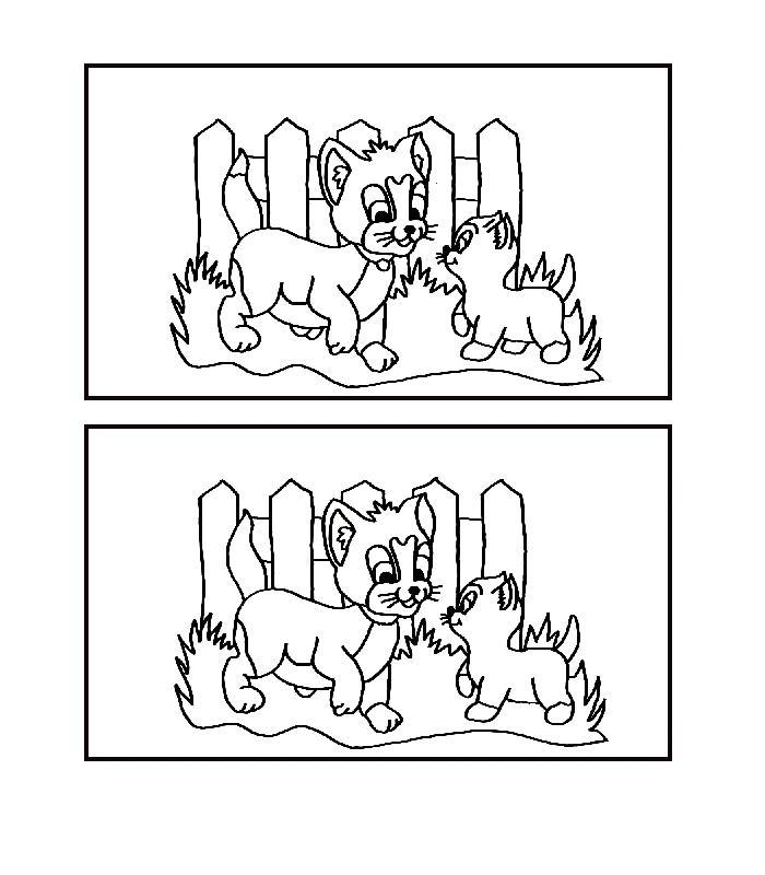 Раскраска кошки, игра найди отличия