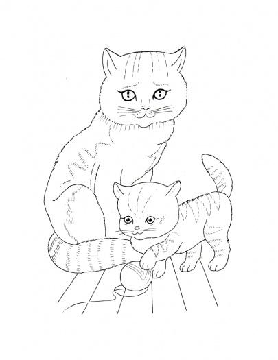 Раскраски кошки  раскраски, кошка, маленький котенок
