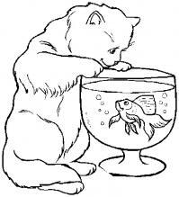 Распечатать раскраску кошка, аквариум и рыбка