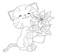 Раскраска кошка и горшок с цветком
