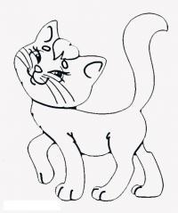 Раскраски кошки  кошка, раскраски для детей, домашние животные
