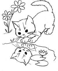 Раскраски кошки  котенок, лужа, маленький, отражение