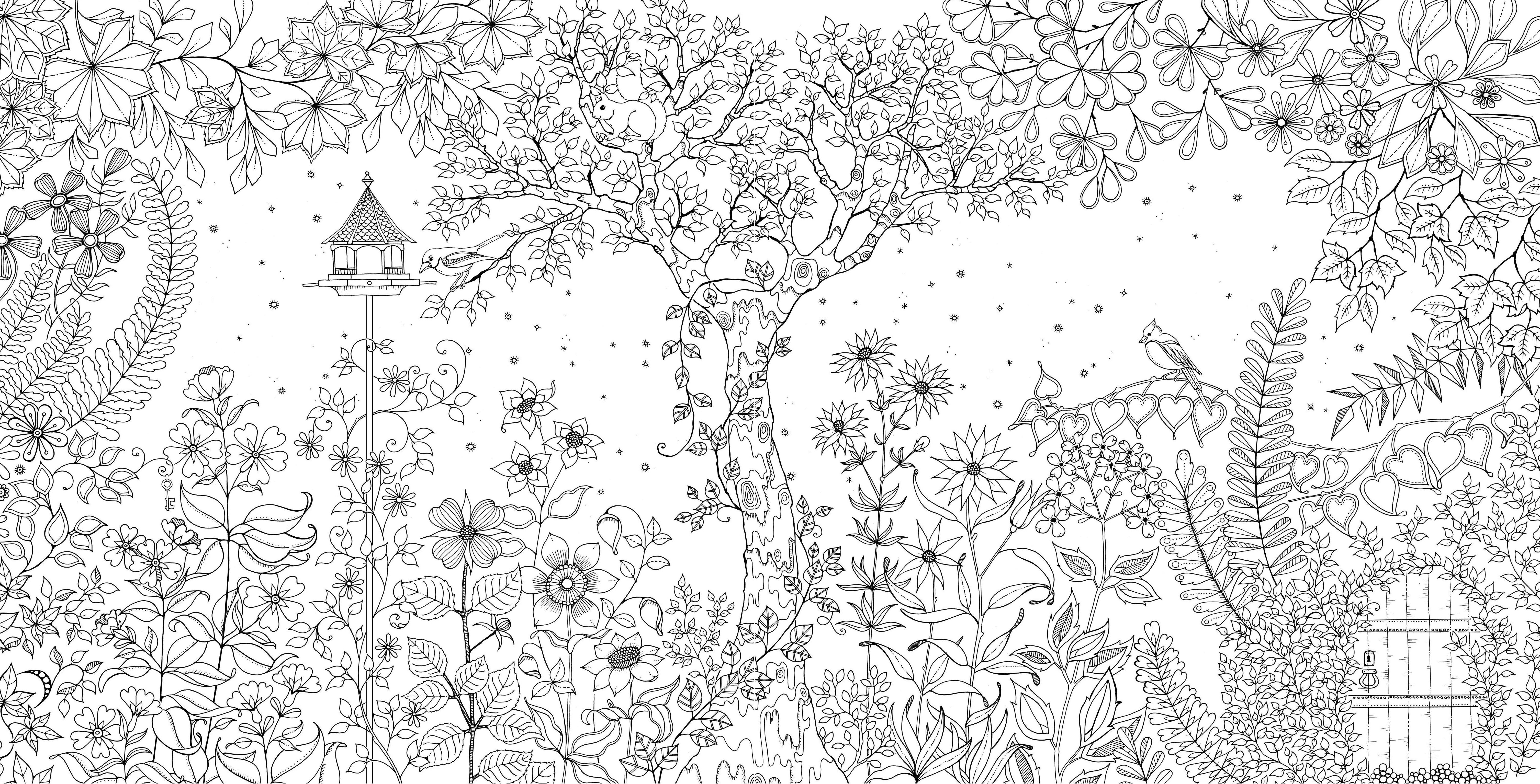 Скачать раскраски зачарованный лес