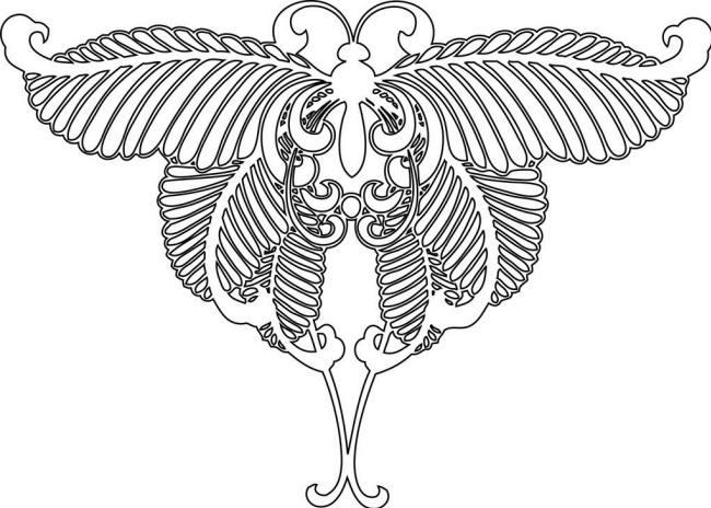 Раскраска бабочка махаон