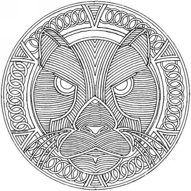 Раскраска для взрослых, львица