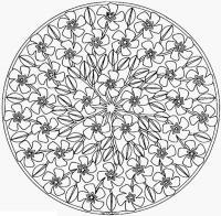 Раскраска для взрослых, букет цветов