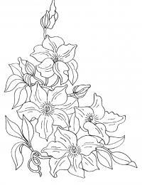 Скачать рисунки для витражей цветы