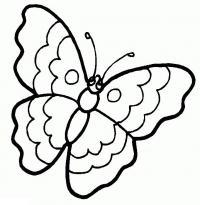 Раскраски бабочки для маленьких