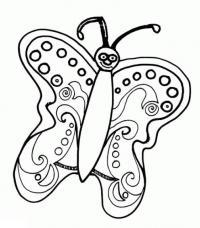 Бесплатные раскраски. бабочки