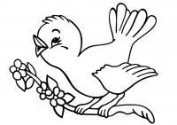 Раскраска для малышей скачать бесплатно, распечатать, птица на ветке