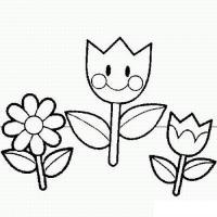 Раскраски простые раскраски для малышей супер цветы