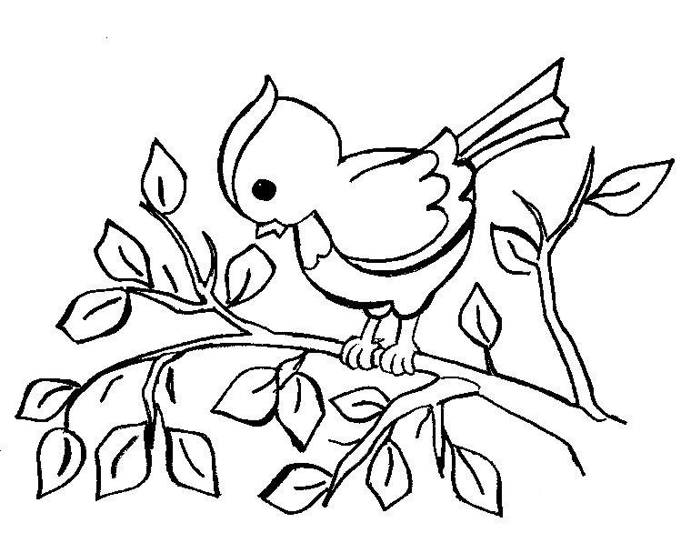 Распечатать раскраску для самых маленьких, птица на ветке
