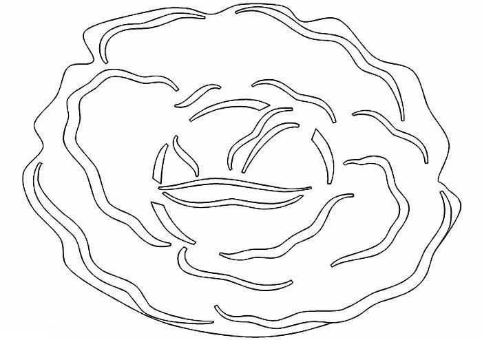 Капуста. бесплатные раскраски для детей, капуста