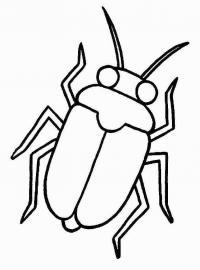 Распечатать раскраску для самых маленьких, жук