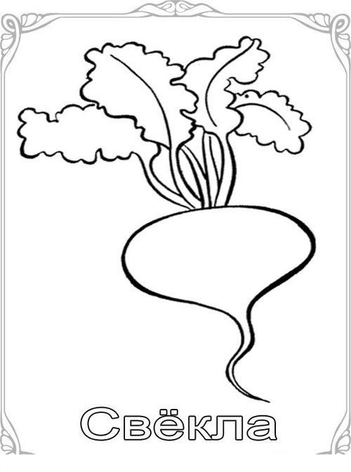 Карточки-раскраски для детей -фрукты и овощи, свекла