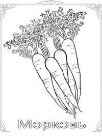 Карточки-раскраски для детей -фрукты и овощи, морковь