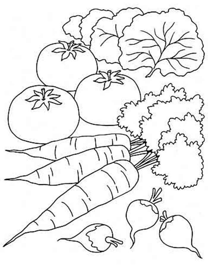 Детские раскраски для девочек и мальчиков. салат, помидор, морковь