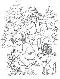 Раскраски растения детская раскраска растения, природа, лес