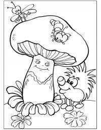 Детские раскраски для девочек и мальчиков, гриб и ежик