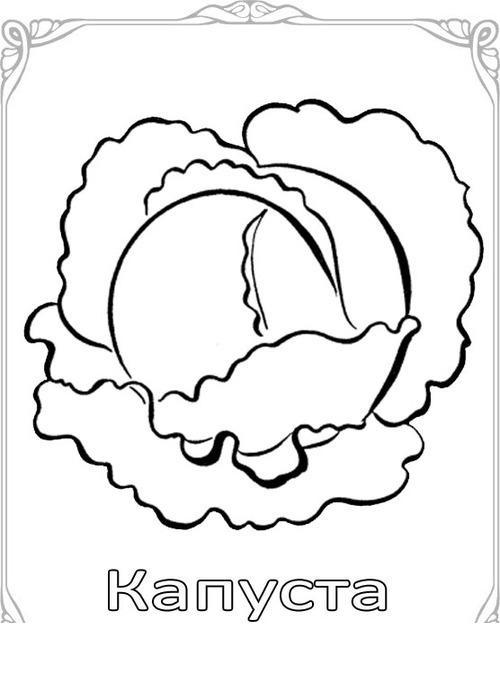 Карточки-раскраски для детей капуста