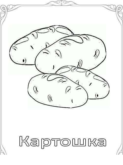Карточки-раскраски для детей - картошка