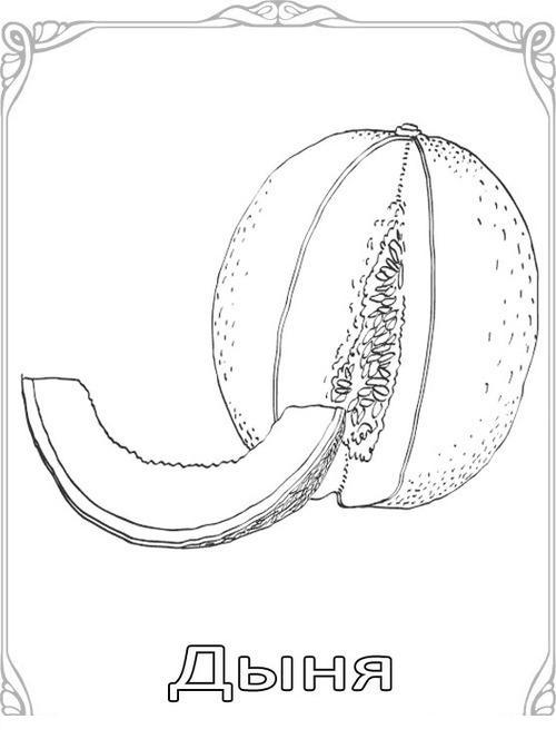 Карточки-раскраски для детей -фрукты, дыня