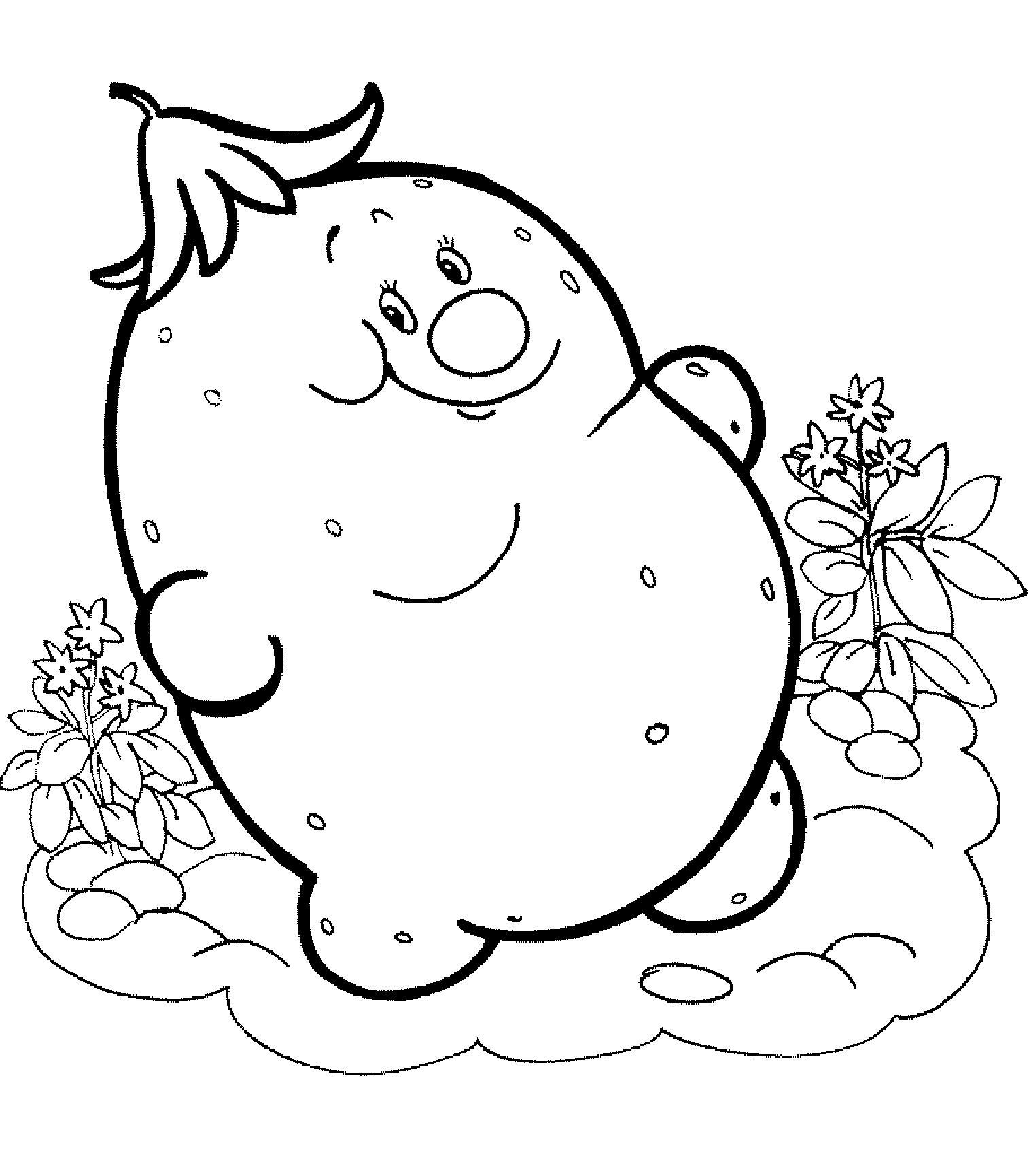 Картофель распечатать бесплатные раскраски для детей: для самых маленьких: овощи, фрукты