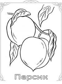 Карточки-раскраски для детей -фрукты, персик