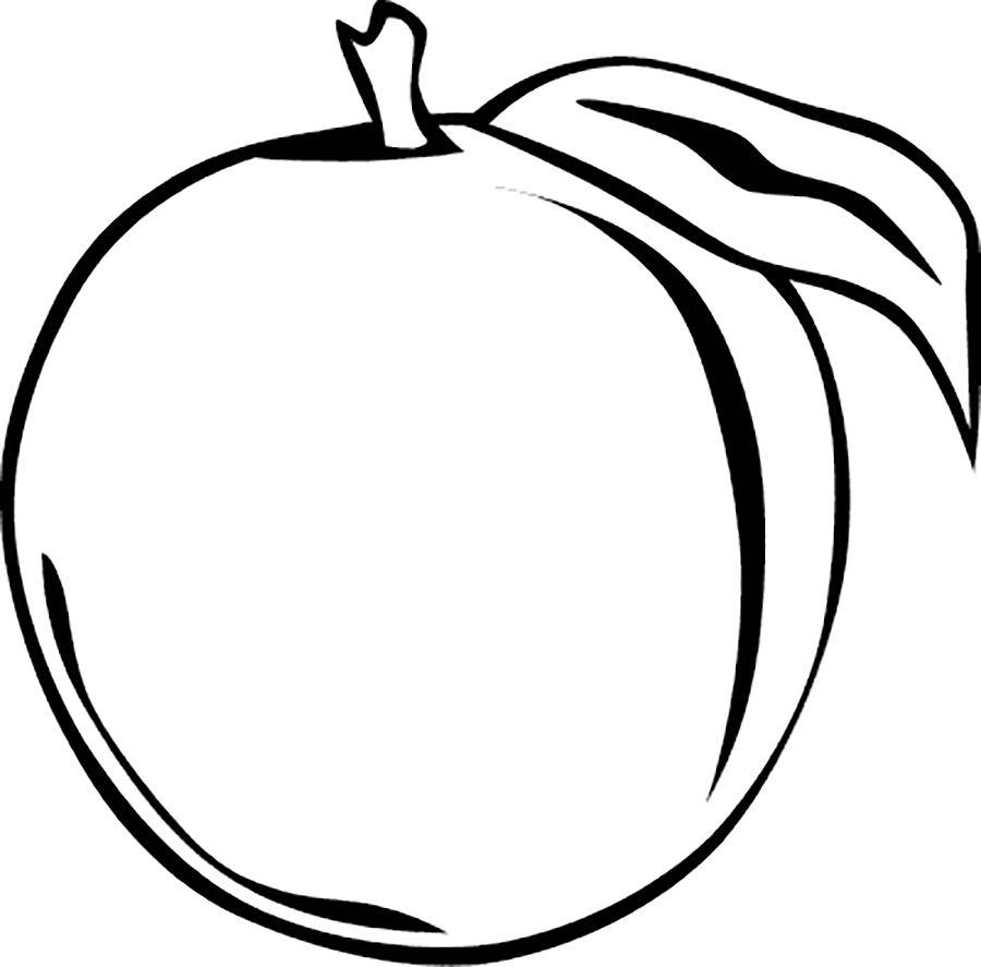 Раскраски фрукты и овощи фрукты трафарет, контур для вырезания из бумаги, персик