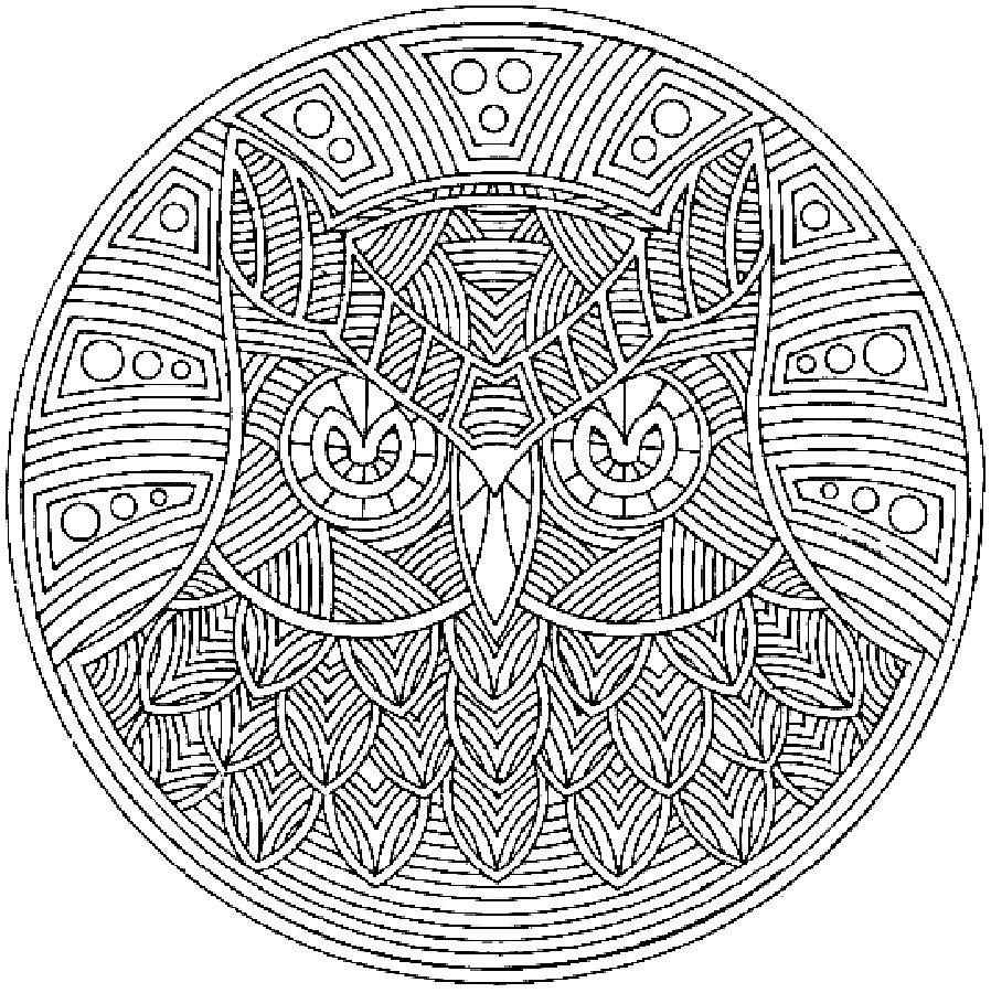 Детские раскраски для девочек и мальчиков, сова